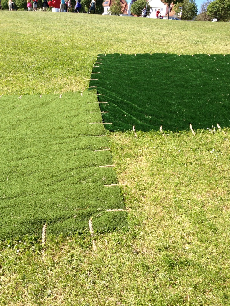 Patchwork lawn