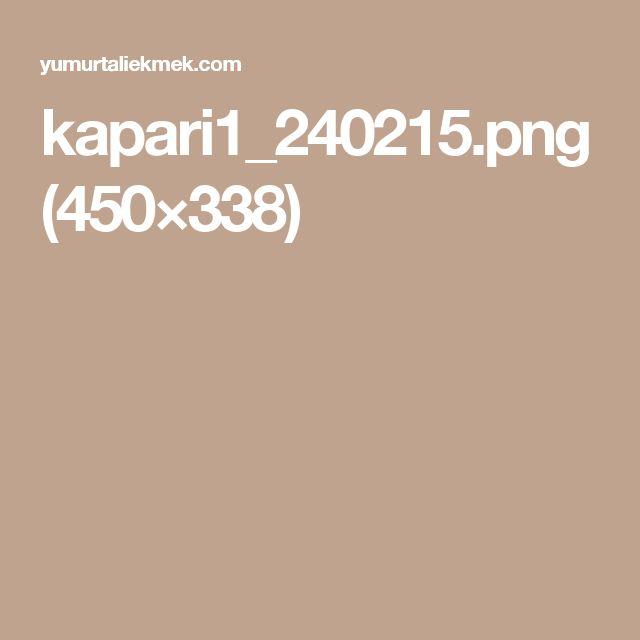 kapari1_240215.png (450×338)