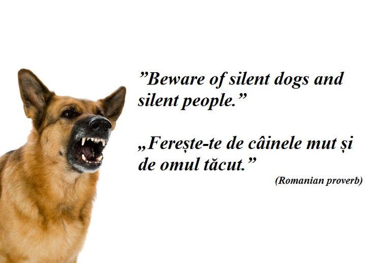 Beware of silent dogs and silent people. --- Ferește-te de câinele mut și de omul tăcut. (Romanian proverb)