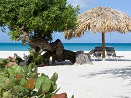 Palm Beach, Aruba : Beach Guide : Travel Channel