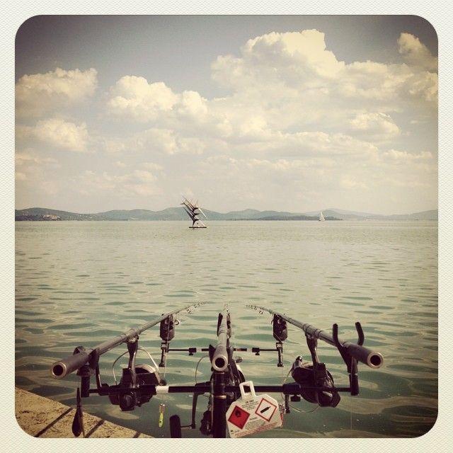 pesca sportiva #altrasimeno foto di @apendiana