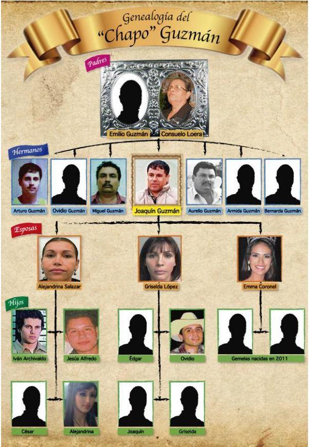 Family Tree For Mexico S El Chapo Guzman Teaching