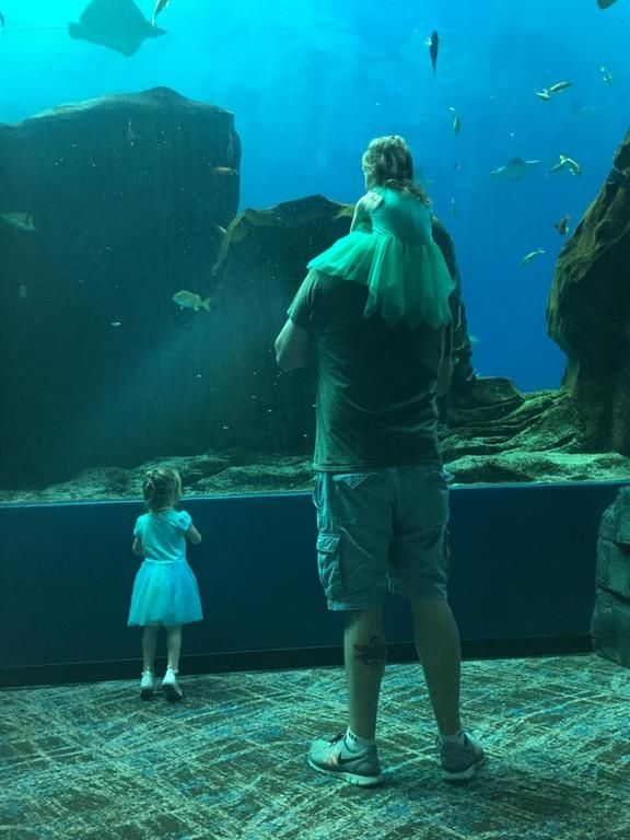 Me and my 2 yr old twin girls soaking it in at the Georgia Aquarium #daddy #love #family #dad #daughter #baby