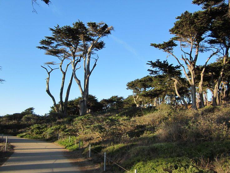 LANDS END TRAIL, SAN FRANCISCO, CA 94121, USA