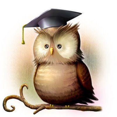 callboy owl gute sexbücher