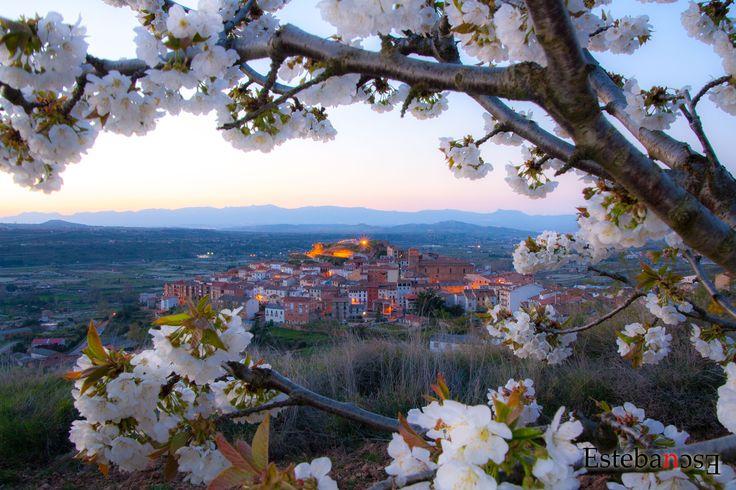 Fotografía Nalda y los cerezos en flor por Esteban Escudero en 500px