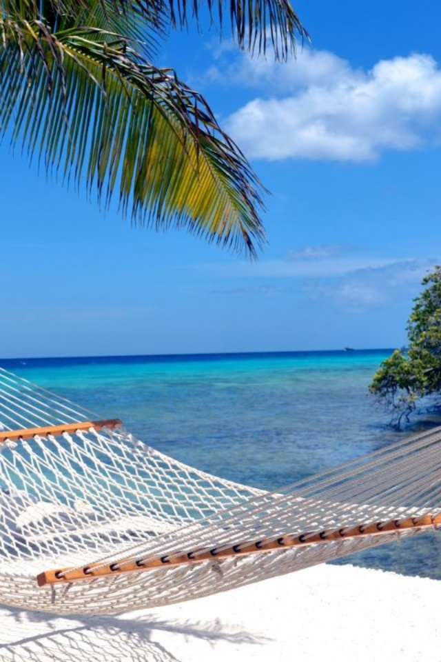 Picture yourself sitting in Aruba  #Aruba #Beach Longaberger can help get you there.
