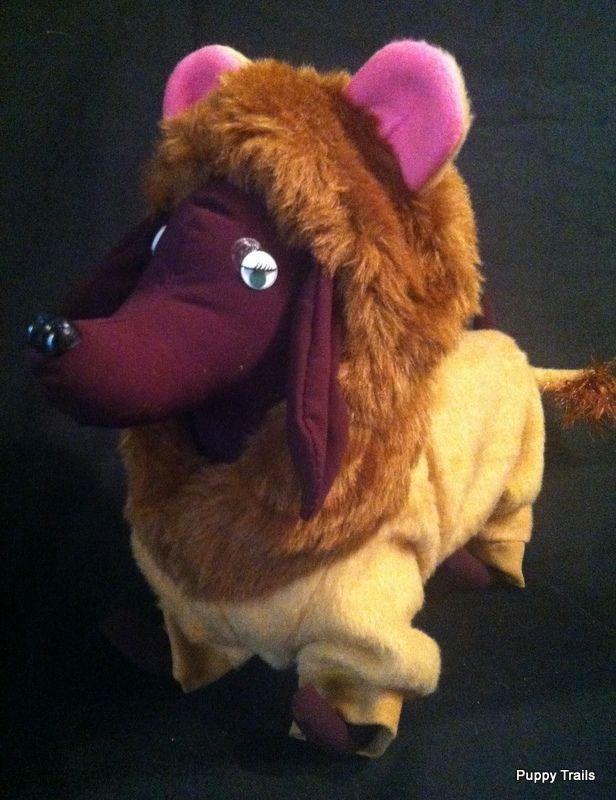 AUCTION ENDING THIS HOUR Pet /Dog    Lion Costume    Size M #PuppyTrails
