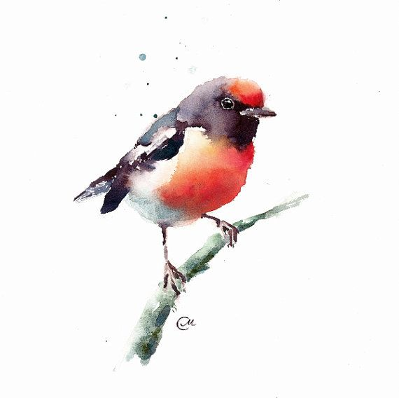 Watercolor Robin - Original Bird Painting 7 4/5 x 7 4/5 inches