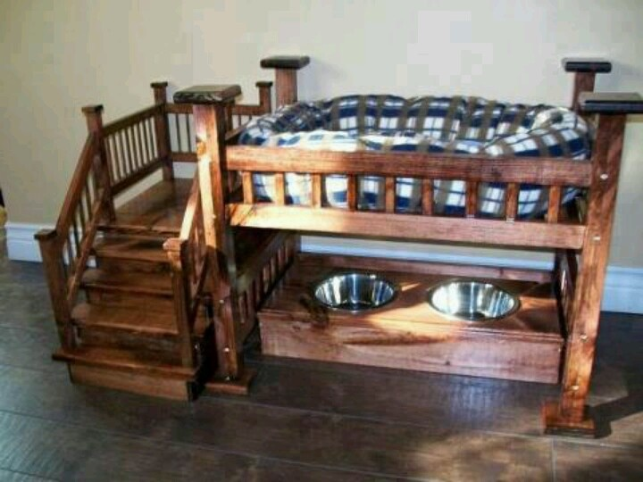 dog bunk bed and feeding station all in one how cute. Black Bedroom Furniture Sets. Home Design Ideas