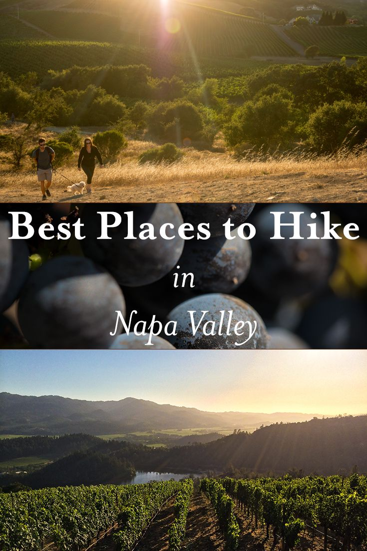 Explore the Napa Valley by foot! #VisitNapaValley #hiking