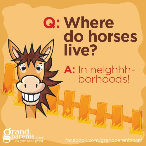 #jokes #kids #humor #horses