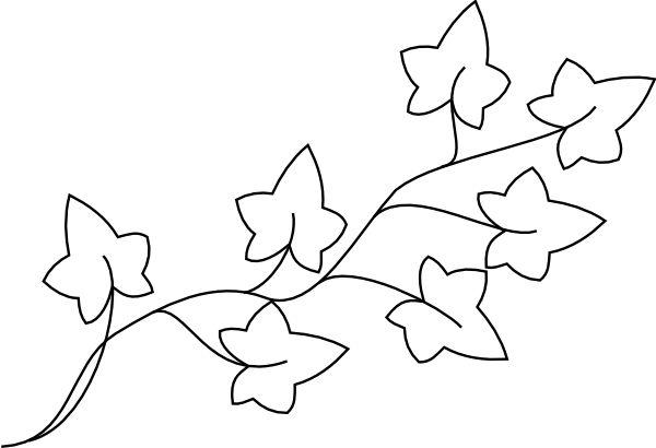 ivy leaf template | Ivy Outline Clip Art Vector Online Royalty Free & Public