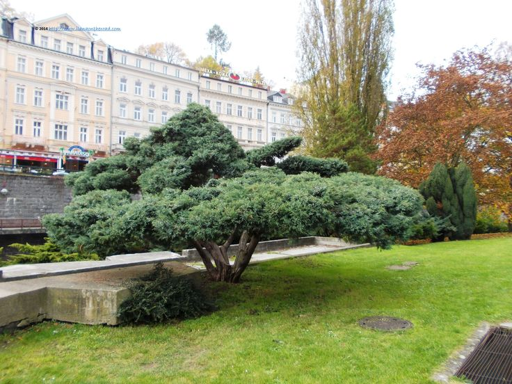 Autumn in Karlovy Vary