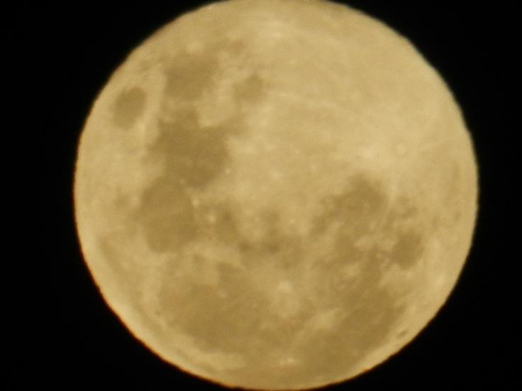 FOTO SACADA EL 04/07/2012 CON UNA NIKON P500,NO USE ESTABILIZADOR PERO SALIO MUY BUENA...