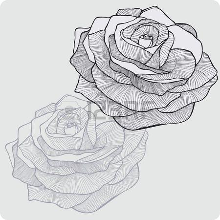 Fleur vintage rose, la main-dessin. Vector illustration.