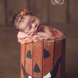 newborn photography prop - halloween - fall - newborn posing