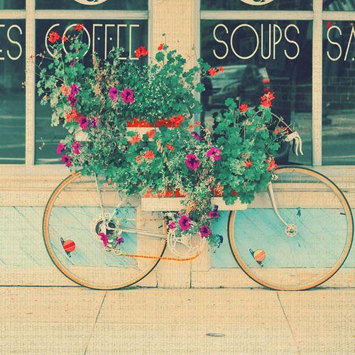 bicicletas floridas - Pesquisa Google