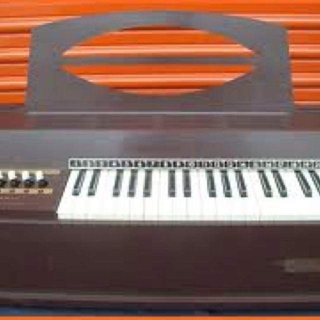 This is identical to my organ I had as a kid. I bought it with my passbook savings account that we had at school.