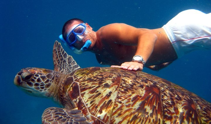 Snorkeling in clear blue waters, Asia expert Laurent Pinci gets up close and personal with a playful sea turtle.