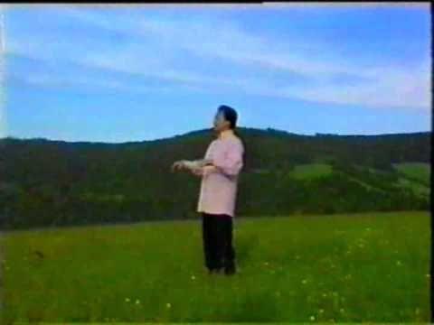 TAI CHI oktató film egészben.  magyar szinkronos