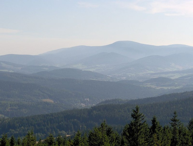 widok z Góry Borówkowej