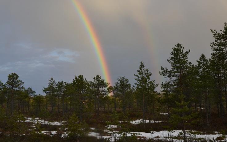 Sateenkaari Haapasuolla huhtikuussa 2012.