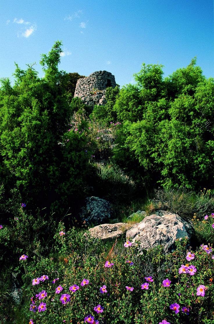 The nuraghe Urceni, Osini #Ogliastra #Sardinia #italy