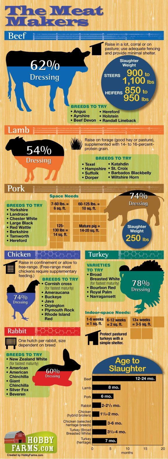 Farming - If you're planning on raising livestock (whether backyard suburban chickens or free range cattle) get the info you need to choose the best meat to raise re: ratio for food, shelter, length of time to table, etc. The infographic compares different livestock species.