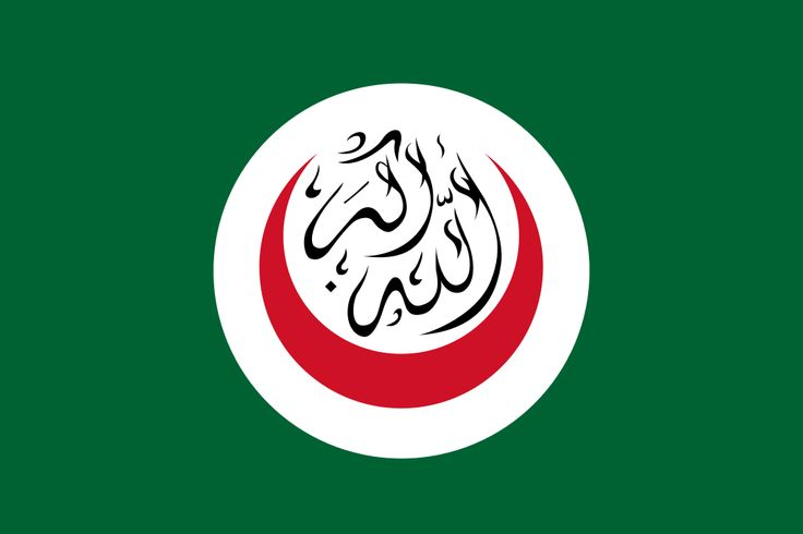 """Organisation of Islamic Cooperation: is an international organisation founded in 1969 consisting of 57 member states. The organisation states that it is """"the collective voice of the Muslim world"""" and works to """"safeguard and protect the interests of the Muslim world in the spirit of promoting international peace and harmony""""."""