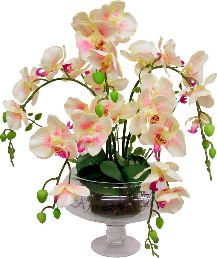 ber ideen zu orchideen im glas auf pinterest. Black Bedroom Furniture Sets. Home Design Ideas