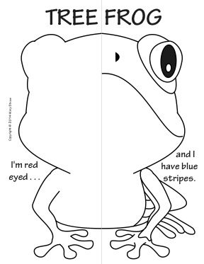 Reptiles and Amphibians Symmetry Activity Coloring Pages. Math with Craft-Creative Writing option.