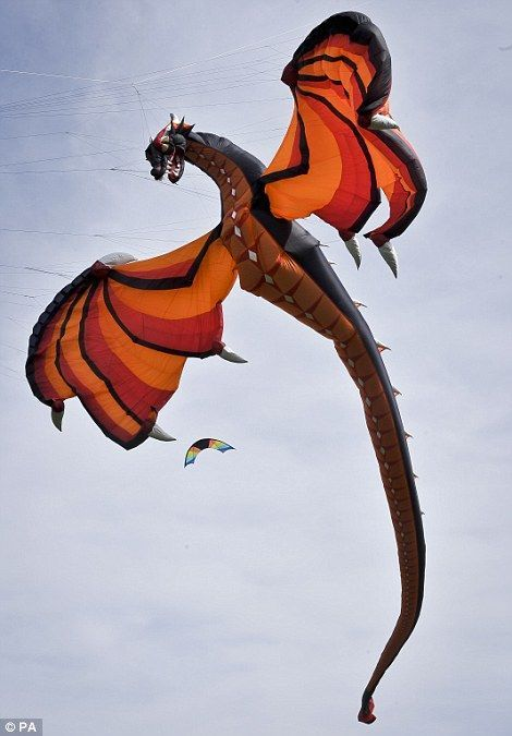 Creative elaborate #dragon kite
