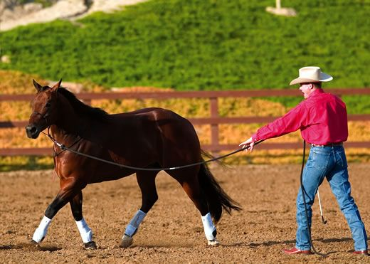Clinton Anderson's Longeing for Respect: Circling Slideshow | Horse&Rider
