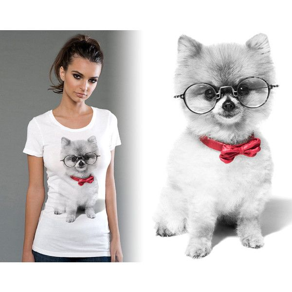 Cute Pomeranian Screen Printed Womens Fitted Scoop Tee Avail in Mens... (21 AUD) ❤ liked on Polyvore featuring tops, t-shirts, silver, women's clothing, sexy shirts, fitted tee, scoop neck tee, white t shirt and women tops