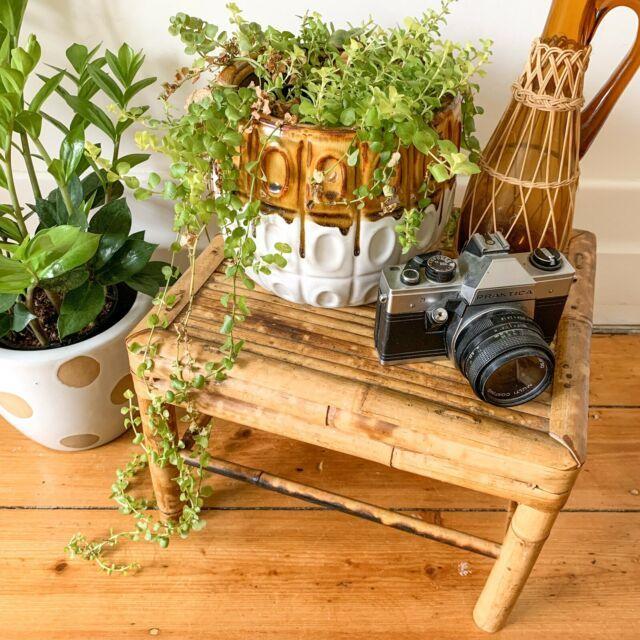 Vintage Tiger Cane Bamboo Stool Plant Stand Stools Bar Stools