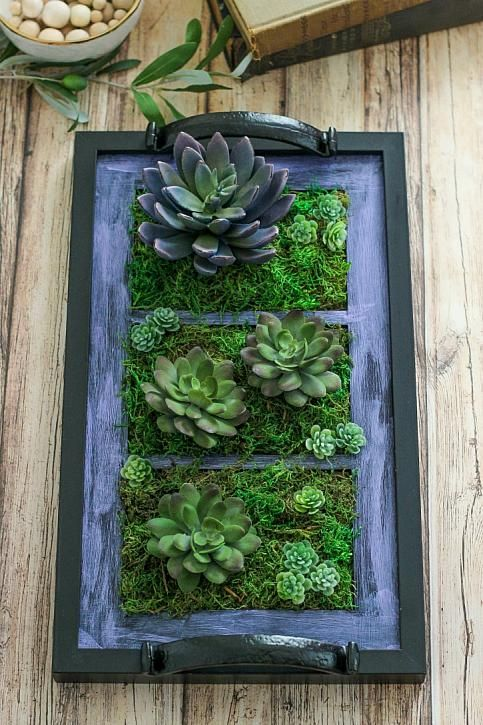 The Casual Craftlete | DIY Picture Frame Tray Garden with DecoArt Patio Paint Outdoor #decoartprojects