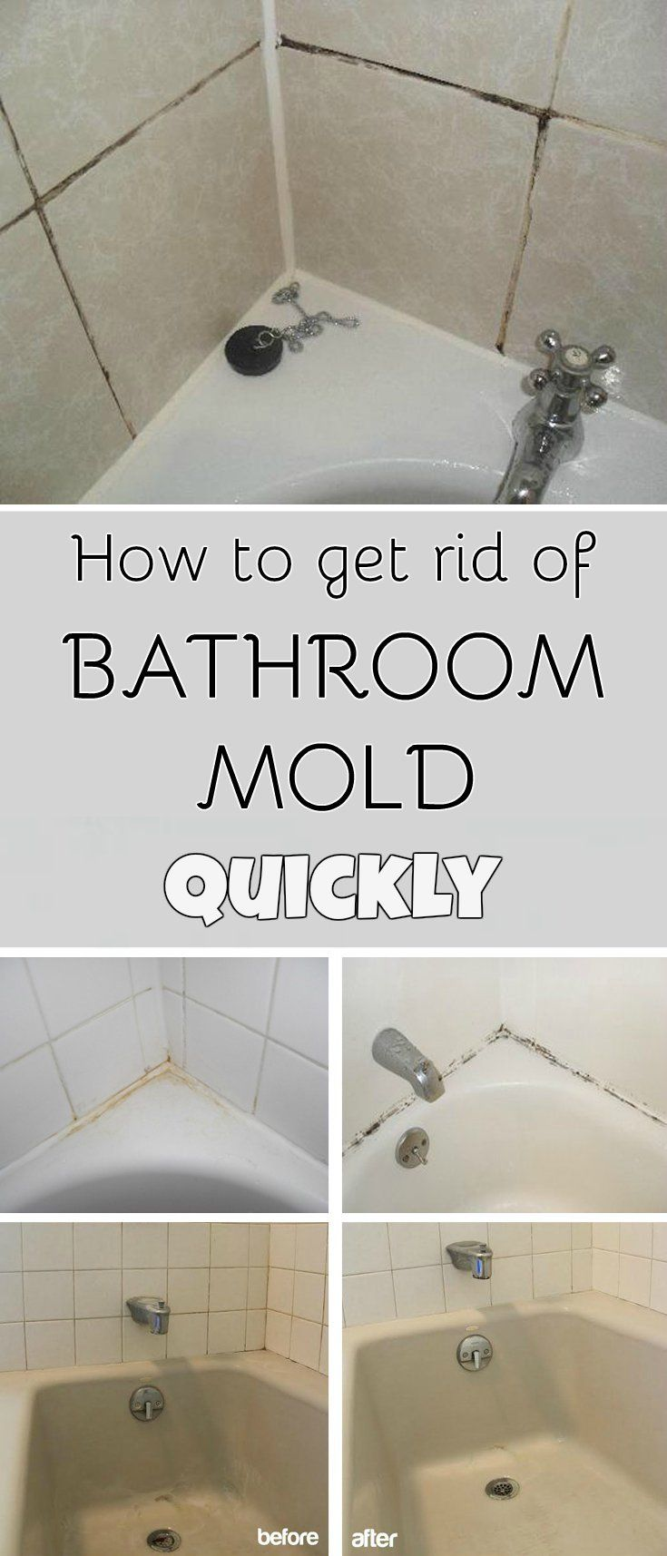 how to get rid of bathroom mold quickly mycleaningsolutionscom - Mold Bathroom Ceiling