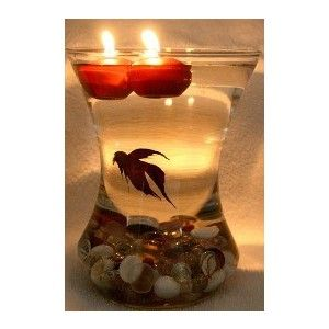 I love using beta fishes for centerpieces!