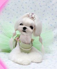 стрижки для собак фото - Поиск в Google