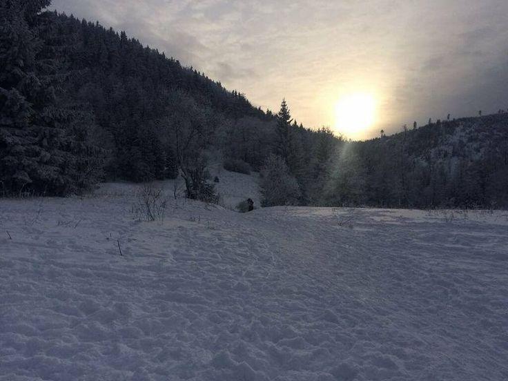 odkryj wałbrzych-narciarskie trasy biegowe -Andrzejówka