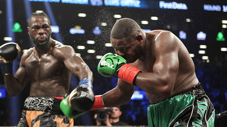 POLL Anthony Joshua vs Deontay Wilder – who would win? #Feature #anthonyjoshua #allthebelts #boxing