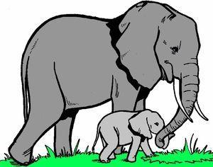 釈尊いわく、ゾウとは、 *自分に与えられた環境・運命に素直に従い、その中でも良く耐える動物であること。 *どんな環境の中でも安心・リラックスしている動物であること。 *だからこそゾウは、王様の乗り物として高貴な御方と一体に成ることも可能な神聖な動物であること。 このように示唆されています。釈尊は、非常にゾウの精神性を高く評価されています。