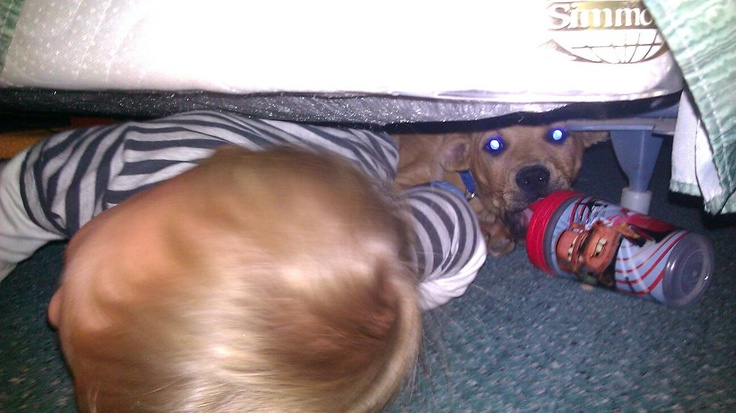 Brian and Zeus under the bed at the hotel sharing milk: Brian James, James Random, Hotels Shared, Shared Milk