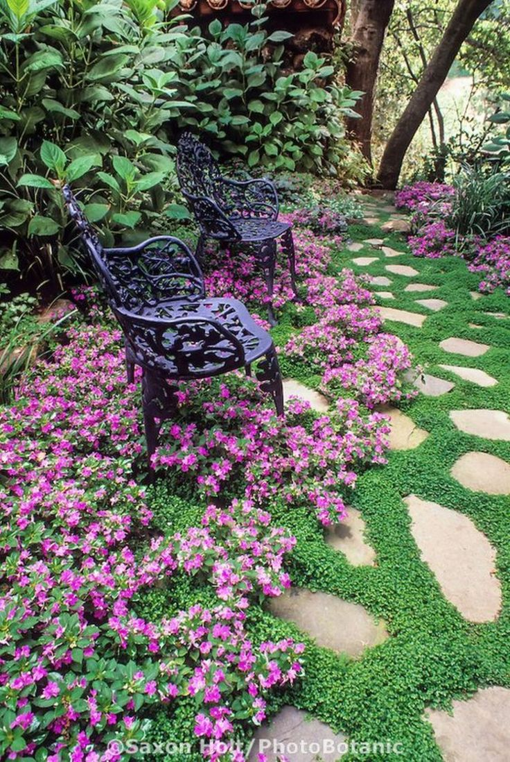 Iron bench in stepping stone path with Baby's Tears (Soleirolia soleirolii) groundcover bordered by pink flower impatiens 'Firefly'. Design: Bob Clark