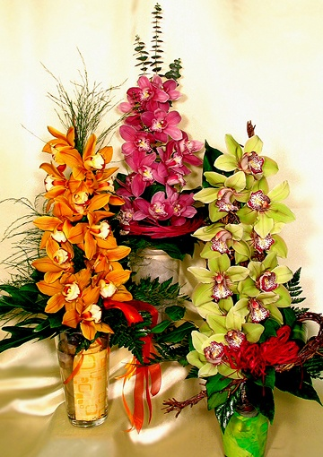 Send a greeting elegantly decorated with orchids and checked! A minimum of 12 flowers delivered! A real special and lasting gift for demanding ones. romantic pink and fresh green, or yellow happy colors. The colors mark the request for the order form comment box. The color of the requests depending on available resources we can deliver. E