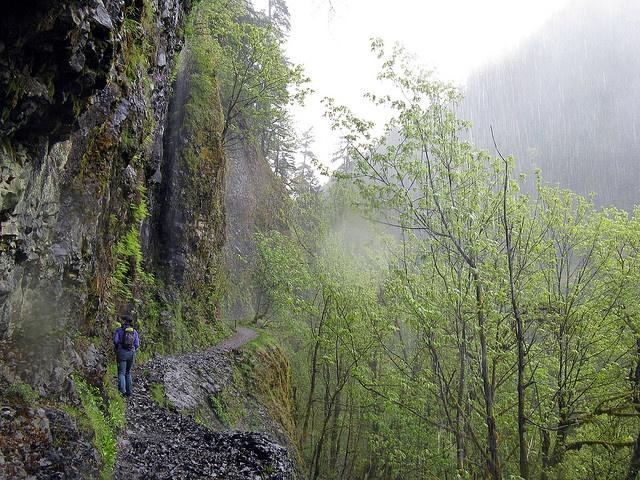 Eagle Creek Trail in Columbia River Gorge National Scenic Area, Oregon. (Photo: Stephen Hui) #hiking