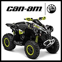 1000 Images About Sweet 4 Wheelers On Pinterest Polaris
