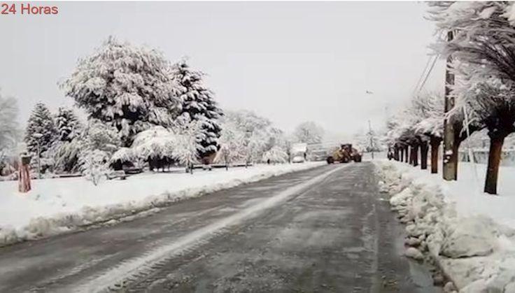 Caída de más de 1 metro de nieve en Lonquimay obliga abrir internados en fin de semana
