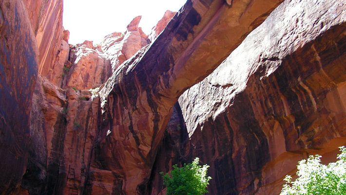 Negro Bill Canyon (SUA)  20 de poze deosebite cu canioane, adevarate sculpturi ale naturii - galerie foto.  Vezi mai multe poze pe www.ghiduri-turistice.info  Sursa : www.wikimedia.org